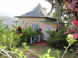 Villa Amore - Port Antonio vacation rentals