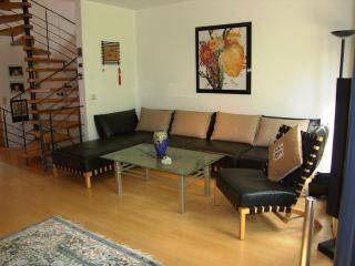Vacation House in Donaueschingen - 1593 sqft, bright, luxurious (# 5604) - Tuttlingen vacation rentals
