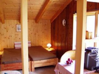 Cottage in Rueschegg - 646 sqft, country, comfortable, quiet (# 6976) - Ruschegg vacation rentals