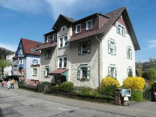 Vacation Apartment in Bad Herrenalb - max. 2 People (# 7627) - Bad Herrenalb vacation rentals