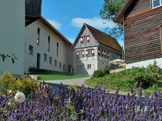 Vacation Apartment in Hayingen - max. 6 persons (# 7654) - Biberach vacation rentals