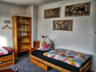 Vacation Apartment in Wolfenbüttel - quiet location, central, close to nature (# 7798) - Wolfenbüttel vacation rentals