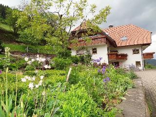 Vacation Apartment in Hofstetten (Baden) - 646 sqft, 2 bedrooms, max. 5 people (# 8395) - Seelbach vacation rentals