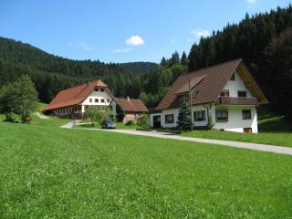 Vacation Apartment in Bad Rippoldsau-Schapbach - max. 5 people (# 8397) - Lossburg vacation rentals