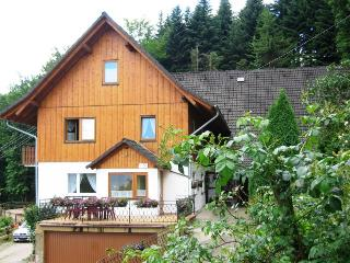 Vacation Apartment in Ottenhoefen im Schwarzwald - 2 bedrooms max. 6 persons (# 8404) - Saarland vacation rentals