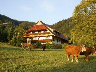 Vacation Apartment in Zell am Harmersbach -  (# 8409) - Lahr vacation rentals