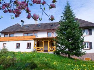 Vacation Apartment in Gengenbach -  (# 8435) - Rheinau vacation rentals