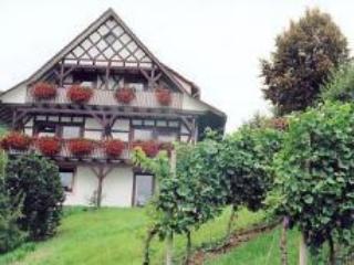 Vacation Apartment in Oberkirch (Baden) - 753 sqft, 2 bedrooms, max. 4 people (# 8437) - Rheinau vacation rentals