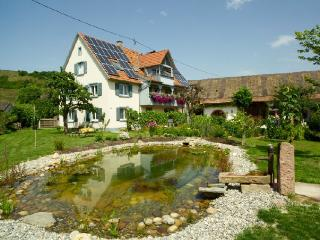 Vacation Apartment in Vogtsburg - 484 sqft, max. 4 people (# 8436) - Herbolzheim vacation rentals