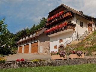 Vacation Apartment in Lahr - 743 sqft, max. 4 people (# 8445) - Schuttertal vacation rentals