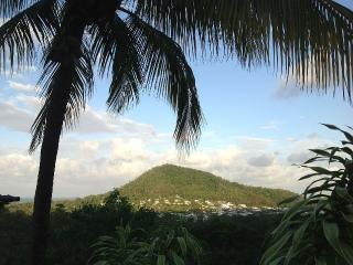 Ark Hill - Pool with Views, Private Hide Away - Trinity Beach vacation rentals