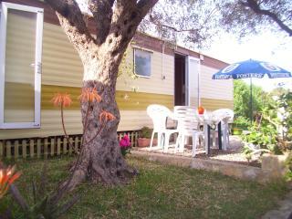 Olive-Finca Gamundi - L'Ampolla vacation rentals