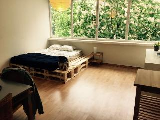 1 1/2 Room Studio - Just for you - Central Switzerland vacation rentals