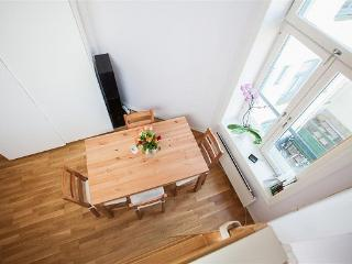 Cute apartmant with bedloft in downtown Oslo - Oslo vacation rentals