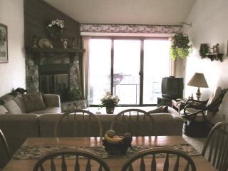 2 br 2 ba Woodcrest lakefront condo BEAUTIFUL VIEW - Lake Ozark vacation rentals