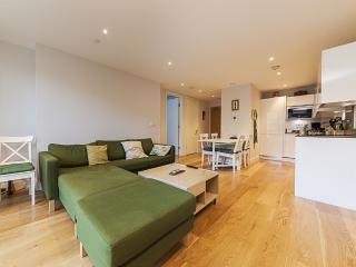 Very central Cambridge modern apartment - Cambridge vacation rentals
