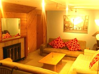 Spacious Suite Minutes to Downtown - Burnaby vacation rentals