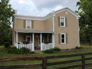 Historic River House - Madison vacation rentals