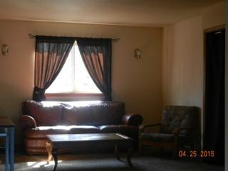 Elegant & Cozy with Majestic View of Pioneer Peak - Wasilla vacation rentals