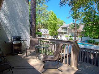 Turtle Lane Club 33 - Hilton Head vacation rentals