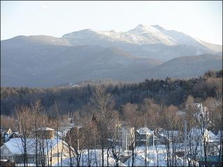 Only Minutes from Smugglers Notch - A Fantastic Vacation Destination for All Seasons (3304) - Fairfax vacation rentals