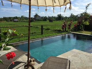 Villa Intani - private Ubud house vacation rental - Sayan vacation rentals