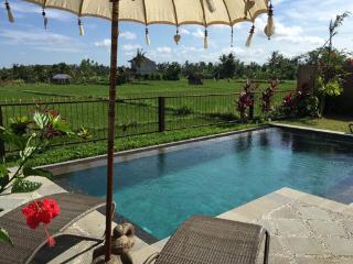 Villa Intani - private Ubud house vacation rental - Ubud vacation rentals