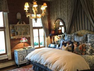 The French Studio Luxe, 2 blocks from Ajax Gondola - Aspen vacation rentals