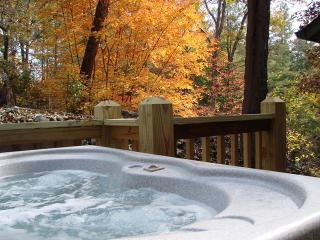 Hardwood Trail Retreat - Brasstown vacation rentals