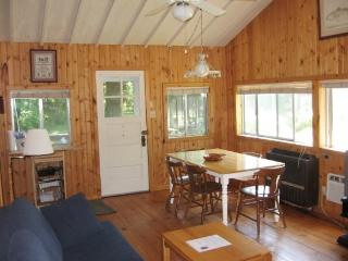 Fern Creek - Steps to Lake Michigan Sandy Beach. Historic Comfy Cottage. Weekly Stays begin on Saturday. - South Haven vacation rentals