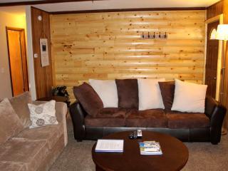 Lazy Bear Retreat (Wifi, Washer, Netflix) - Big Bear City vacation rentals
