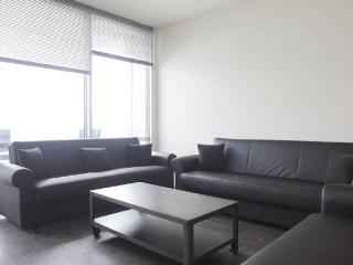 Luxury 2 Bedroom Condo In The Heart Of The City - Chicago vacation rentals