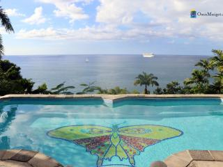 Butterfly Beach House, Walk to Long Sandy Beach - Castries vacation rentals