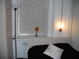 Studio (2 persons) - Saint Petersburg vacation rentals