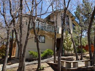 A Bird's Eye View - Big Bear Lake vacation rentals