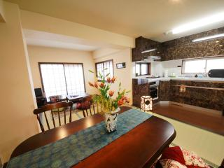 Modern Japanese Apartment -Gozan - Kyoto Prefecture vacation rentals