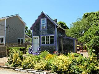 COZY,CUTE COTTAGE NEAR TOWN & BEACH. - Oak Bluffs vacation rentals