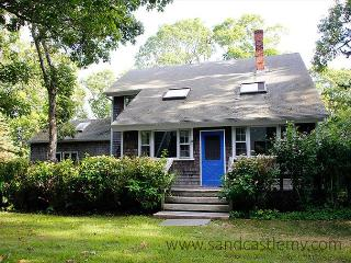 SPACIOUS AND COMFORTABLE CHILMARK CAPE WITH CENTRAL AIR CONDITIONING - Chilmark vacation rentals