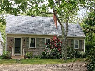 ADORABLE CAPE LOCATED CLOSE TO MORNING GLORY FARM AND OFFERS ASSOCIATION TENN - Edgartown vacation rentals