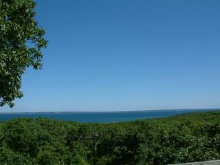 CHARMING HOME W/VIEWS OF VINEYARD SOUND & ELIZABETH ISLANDS - Chilmark vacation rentals