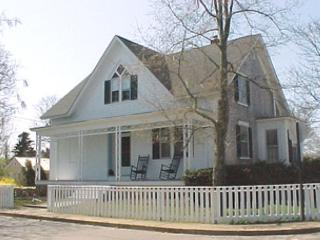 HISTORIC DISTRICT HOME JUST A SHORT STROLL TO TOWN & 2 BEAUTIFUL BEACHES! - Edgartown vacation rentals