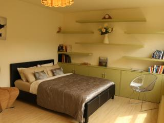 Budget studio apartment in the centre of SoHo - London vacation rentals