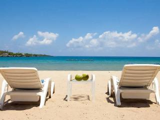 Beachnut, Rio Bueno, Jamaica Villas 3BR - Montego Bay vacation rentals