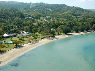Noble House- Montego Bay 5BR - Hope Well vacation rentals