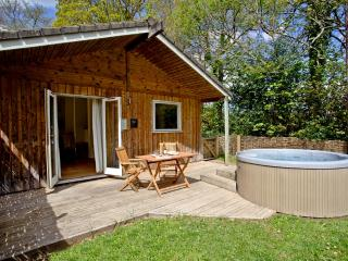 Royal Lodge, 6 Indio Lake located in Bovey Tracey, Devon - Bovey Tracey vacation rentals