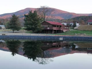 Hawksbill Retreat - Mare House - Stanardsville vacation rentals