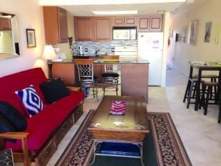 ROMANTIC VANDERBILT BEACH WITHOUT THE BEACH PRICE - Florida South Gulf Coast vacation rentals