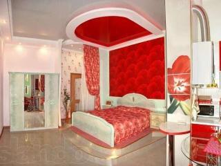 VIP Sovetskaya studio - Mykolayiv vacation rentals