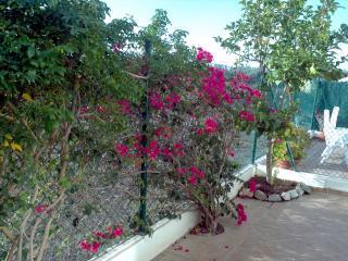 Casa clare - Salobrena vacation rentals