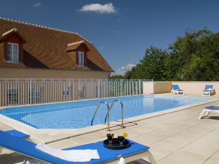 Appart Hotel la Roche Posay - Ingrandes vacation rentals